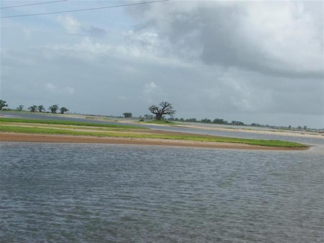Sine Saloum Delta
