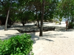 Tiwi Beach Canoe