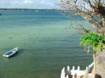 Wasini View