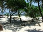 Tiwi Beach Room View