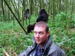 5-gorillas