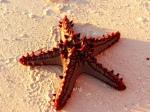 1 Kendwa Beach