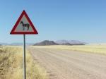 12 Namib Rand