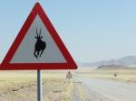 18 Namib Rand