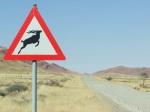 23 Namib Rand